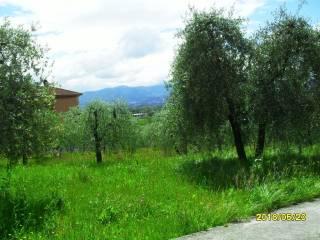 Foto - Terreno edificabile residenziale a San Gemini