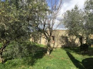Photo - Country house, to be refurbished, 90 sq.m., Palestrina