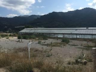 Foto - Terreno agricolo in Vendita a Camporosso