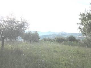 Foto - Terreno edificabile residenziale a Colledara