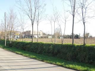 Foto - Terreno edificabile residenziale a Gonars