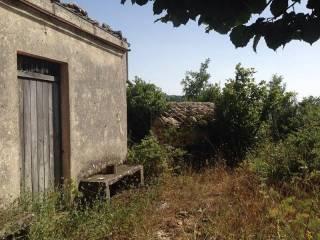 Foto - Terreno agricolo in Vendita a Polizzi Generosa