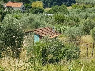 Foto - Terreno edificabile residenziale a Loro Ciuffenna