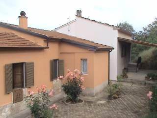Foto - Casa indipendente Località Palmente, Rogliano