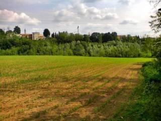 Foto - Terreno agricolo in Vendita a Figino Serenza