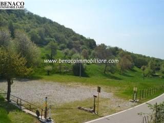 Foto - Terreno agricolo in Vendita a San Zeno di Montagna