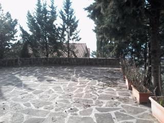 Foto - Rustico / Casale Strada Provinciale 133 38, Casalsottario, San Mauro Cilento