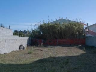 Foto - Terreno edificabile residenziale a Riola Sardo
