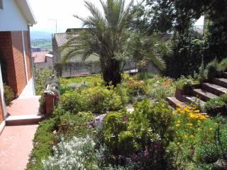 Foto - Villa via Giovanni Pascoli 1, Berchidda