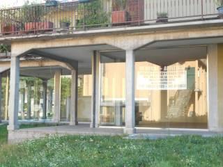 Immobile Affitto Costa Volpino