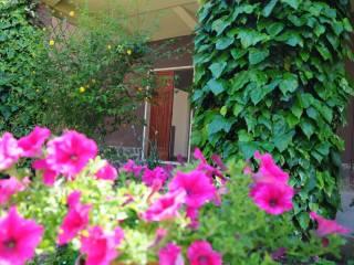 Foto - Appartamento Strada Provinciale 12, Canale Nuovo, Orvieto