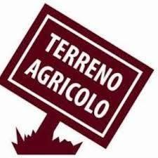 Foto - Terreno agricolo in Vendita a Pietrasanta