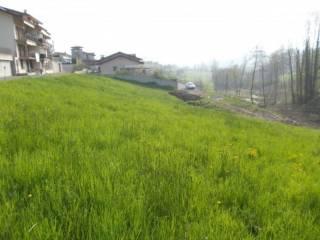 Foto - Terreno edificabile residenziale a Monastero di Vasco