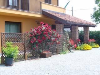 Foto - Villa via Vecchia di San Vitale, Busca