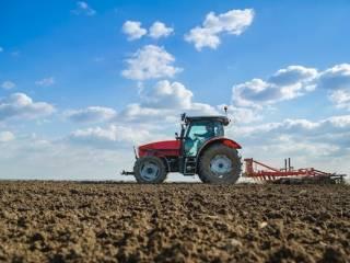 Foto - Terreno agricolo in Vendita a Noventa Padovana