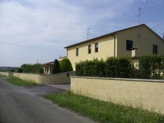 Foto - Palazzo / Stabile via Ruviole, San Biagio, Argenta