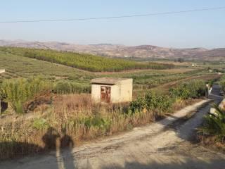 Foto - Terreno agricolo in Vendita a Ribera