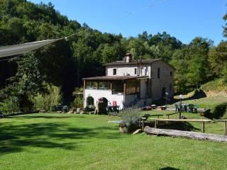 Foto - Rustico / Casale via Castello 2, Licciana Nardi