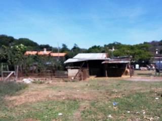 Foto - Terreno agricolo in Vendita a Anguillara Sabazia