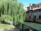 Appartamento Vendita Treviso  1 - Centro Storico