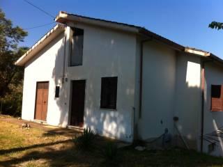Foto - Rustico / Casale, buono stato, 18061 mq, Buccino
