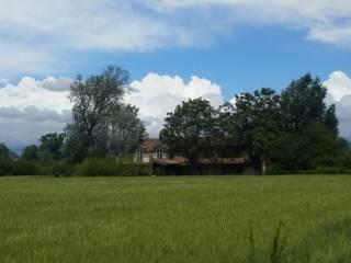 Foto - Rustico / Casale, ottimo stato, 350 mq, Molino Dei Torti