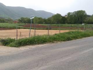 Foto - Terreno agricolo in Affitto a Ceccano