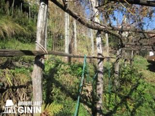Foto - Rustico / Casale, buono stato, 28 mq, Cannobio