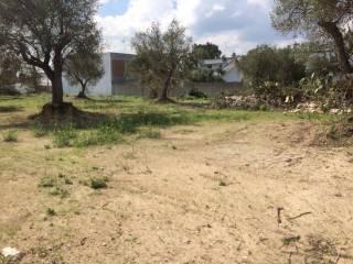 Foto - Terreno edificabile residenziale a Melendugno