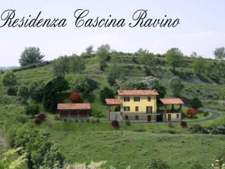 Foto - Terreno edificabile residenziale a Silvano d'Orba
