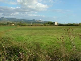 Foto - Terreno agricolo in Vendita a Casal Velino