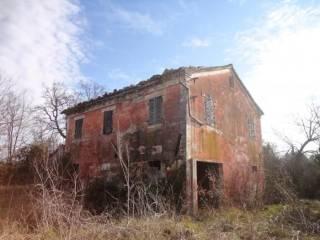 Foto - Rustico / Casale, da ristrutturare, 274 mq, Belvedere Ostrense