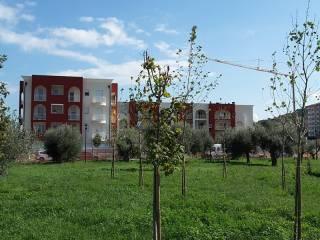 Foto - Quadrilocale via Luciani Alfredo, San Silvestro, Pescara