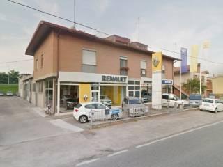 Immobile Affitto Argenta