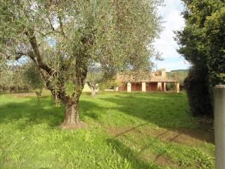 Foto - Villa via della Rena 109, Trevignano Romano