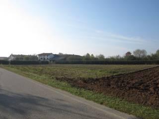 Foto - Terreno edificabile residenziale a Coseano