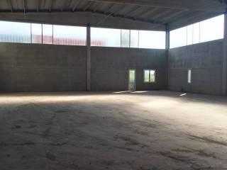 Immobile Vendita Ferrara  7 - Baura, Contrapò, Villanova di Denore, Quartesana