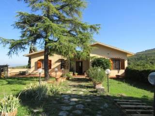 Foto - Villa Località Sezzate - Strada 37, Strada In Chianti, Greve in Chianti