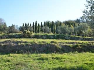 Foto - Terreno agricolo in Vendita a Serravalle Pistoiese