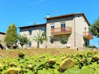 Foto - Villa unifamiliare via dell'Agricoltura 7, Ponte Cane, Fratta Todina