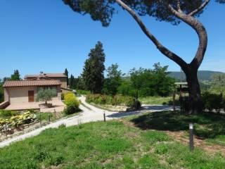 Photo - 3-room flat Strada Provinciale 1, San Gimignano