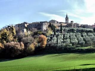 Foto - Terreno edificabile residenziale a Castel Ritaldi