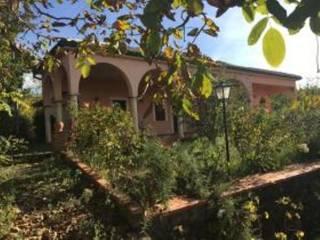 Foto - Villa contrada Scolaro, Adrano