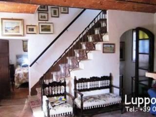 Foto - Villa via Montecapino 37, Chiusdino