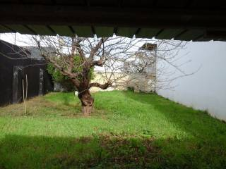 Foto - Terreno edificabile residenziale a Monteiasi
