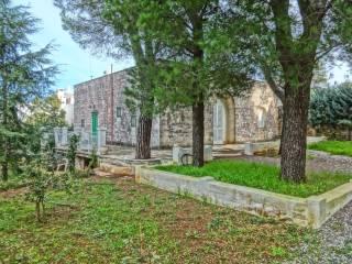 Foto - Rustico / Casale viale Toledo 29, Selva di Fasano, Fasano