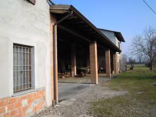 Foto - Rustico / Casale, buono stato, 14100 mq, Carpaneto Piacentino