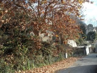 Foto - Terreno edificabile residenziale a Maslianico