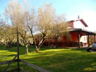 Foto - Villa SS Aurelia, 0, Vetralla