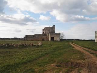 Foto - Rustico / Casale, da ristrutturare, 1000 mq, Salice Salentino